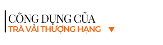 Cong-dung-tra-vai-thuong-hang