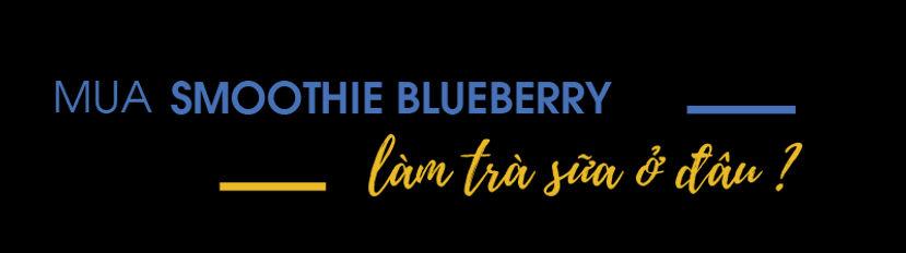 Mua-smoothie-blueberry-lam-tra-sua-o-dau