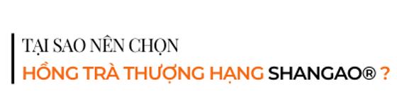 Tai-sao-nen-chon-hong-tra-thuong-hang-sh