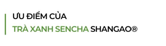 Uu-diem-cua-tra-xanh-sencha-shangao