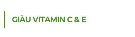 Giau-vitamin-C-va-E