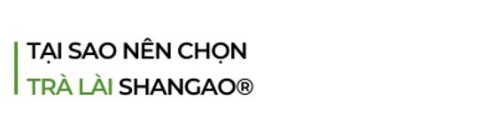 Tai-sao-nen-chon-tra-lai-shangao