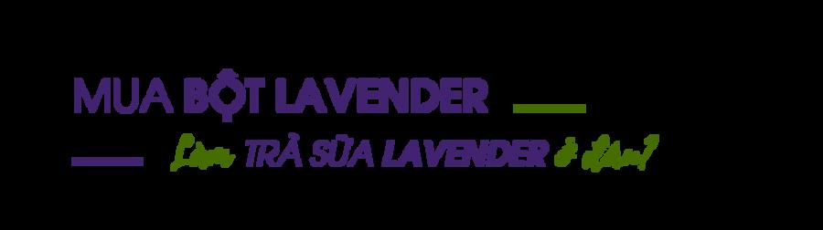 Mua-bot-Lavender-lam-tra-sua-lavender-o-dau