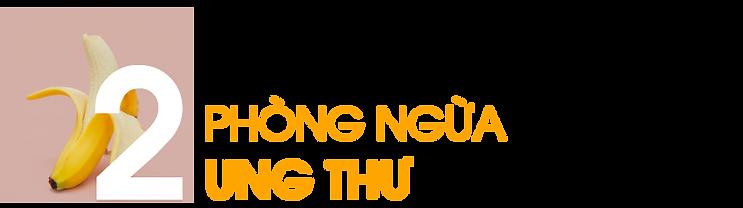 Phong-ngua-ung-thu
