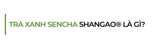 Tra-xanh-sencha-shangao-la-gi