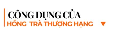 Cong-dung-cua-hong-tra-thuong-hang