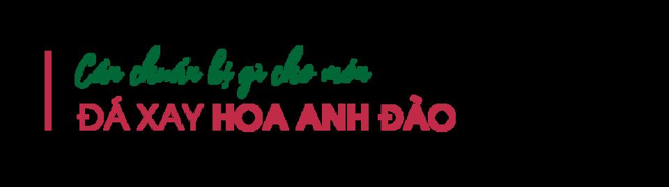 Can-chuan-bi-gi-cho-mon-da-xay-hoa-anh-d