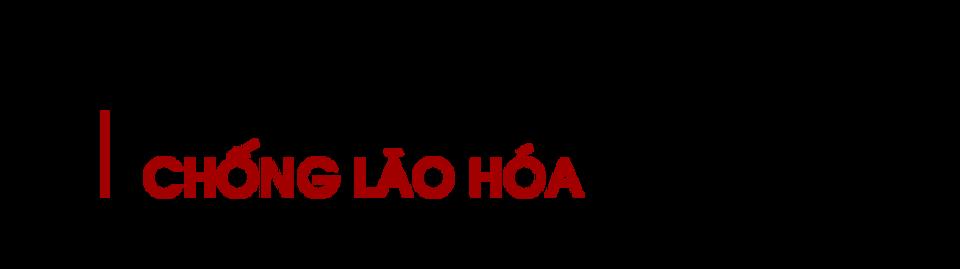 Chong-lao-hoa