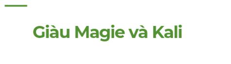 Giau-Magie-va-Kali