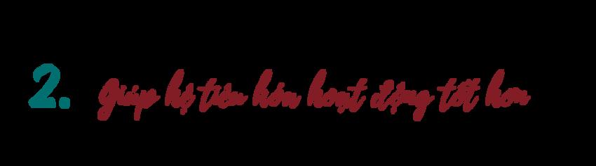 Giup-he-tieu-hoa-hoat-dong-tot-hon