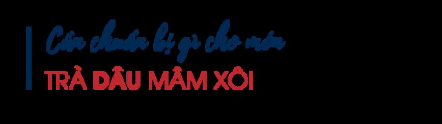 Can-chuan-bi-gi-cho-mon-tra-dau-mam-xoi