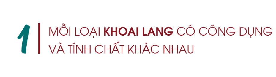 Moi-loai-khoai-lang-co-cong-dung-va-tinh-chat-khac-nhau