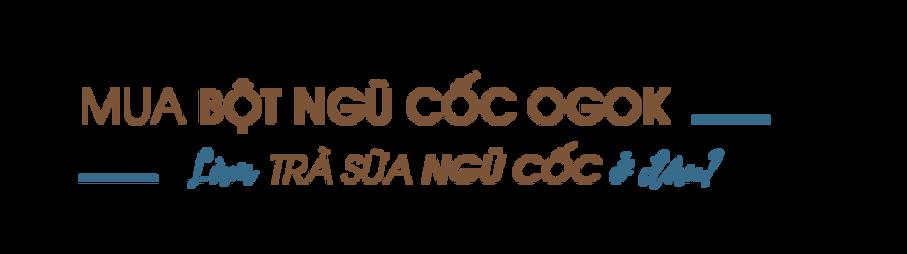 Mua-bot-ngu-coc-ogok-lam-tra-sua-ngu-coc-o-dau