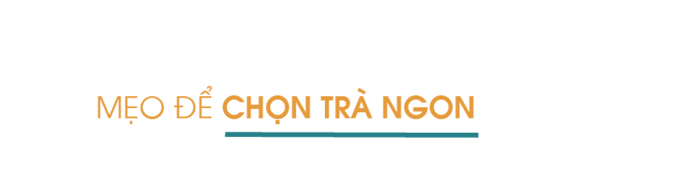 Meo-de-chon-tra-ngon