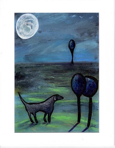 Dog & the Moon