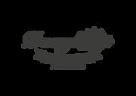 DN logo gri-01.png
