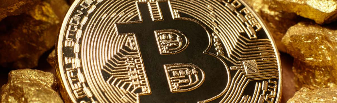 bitcoin will replace gold