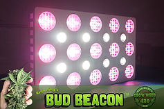 Bud-Beacon-1800w-grow-light.jpg