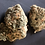 Thumbnail: Shishkaberry Cannabis Strain