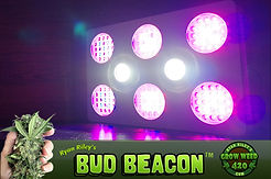 BudBeacon_LED_Marijuana_Grow_Light_600w.
