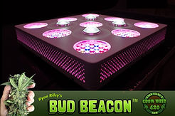 bud-beacon-marijuana-LED-growing-light-1