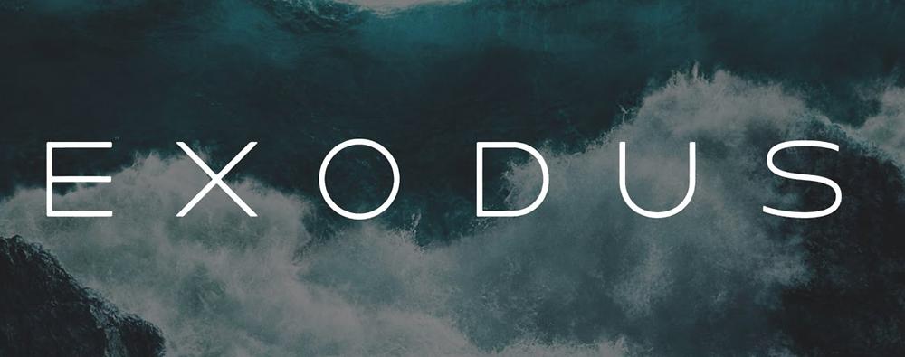 exodus adds ripple's xrp