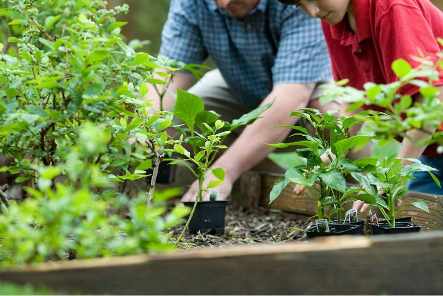 Das Smart Home gibt es jetzt auch für den Garten. In diesem Artikel finden Sie Smart Home Geräte für den Außenbereich.