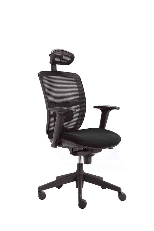 High Back Task Chair with Headrest, Height Adj Arms & Lumbar Support Black