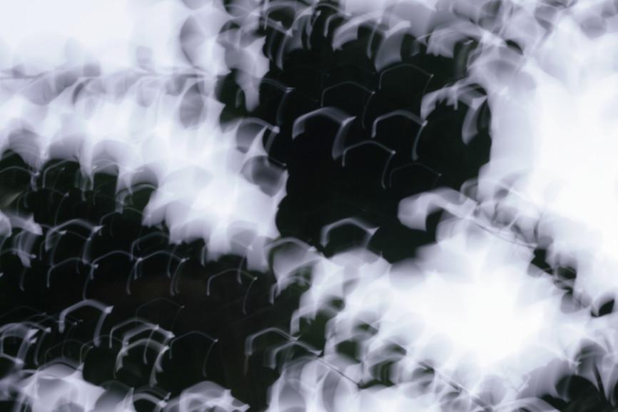 10. 황성원 Sungwon Hwang_Untitled_C-P