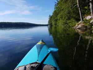 Our First Paddle Blog Post - Morning Paddle / Introduction