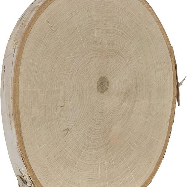 "8"" Birch rounds"