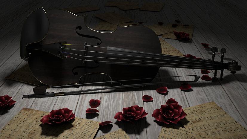 violine_4.jpg