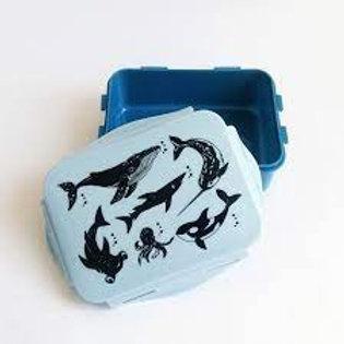 """Lunchbox Bleue Animaux marins noirs """"Petit Monkey"""""""