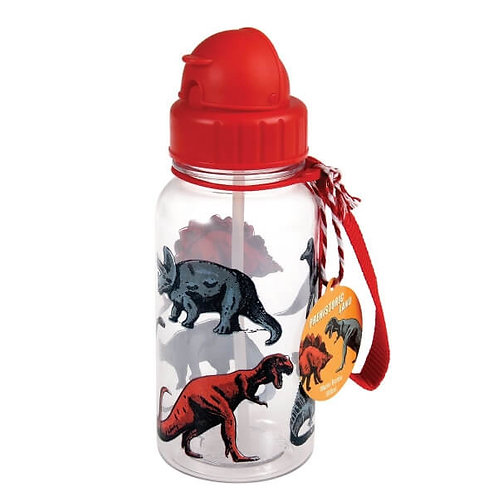 "Gourde paille Dino (sans BPA) ""Rex"""