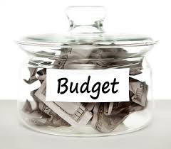 2016-17 Mid-Year Budget Review