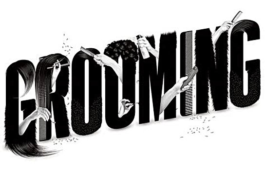 Grooming-Banner.jpg