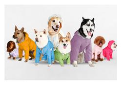 23犬種量身訂做,保證專屬合身