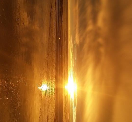 sun-1486974_960_720_modifié.jpg