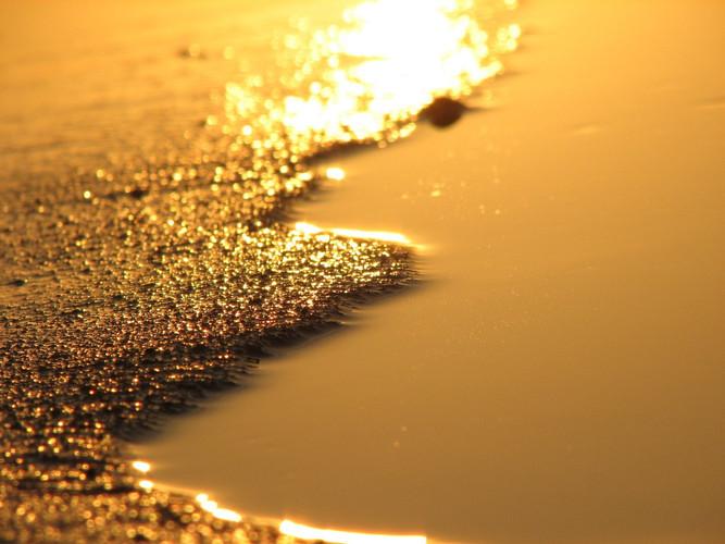 golden-reflection-1401236.jpg