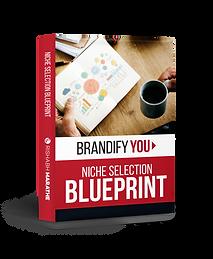 Blueprint-Niche-Selection.png