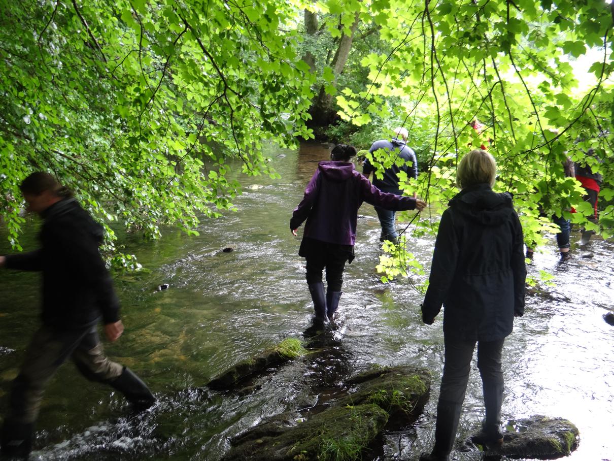 Flußwanderung