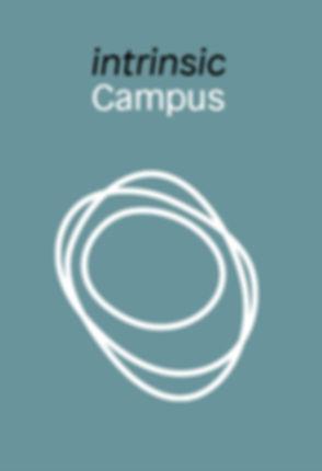 intrinsic_Campus_kringel.jpg
