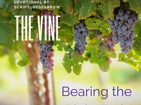 The Vine (Bearing the right fruit)