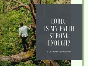 Lord, Is My Faith Strong Enough? How Do I Share My Faith When I'm Struggling?