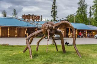 Alaska: Blutsaugeralarm