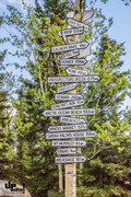 Alaska: Ja, wohin denn nun?