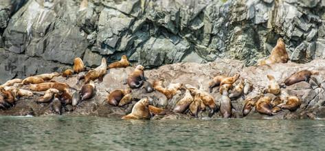 Alaska: Wir sind laut!