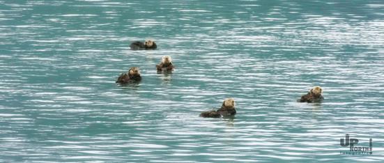 Alaska: We are family