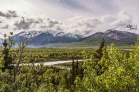 Alaska: Das Tal der Bisons