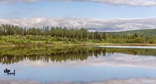 Alaska: Im Norden von Fairbanks